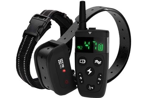 TBI Pro Dog Training Collar