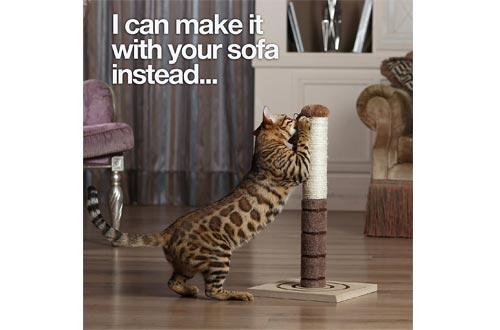 Cat Scratch Post Cats Kittens