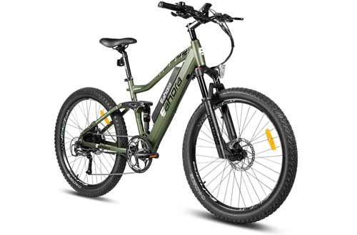 Electric Bikes for Adults