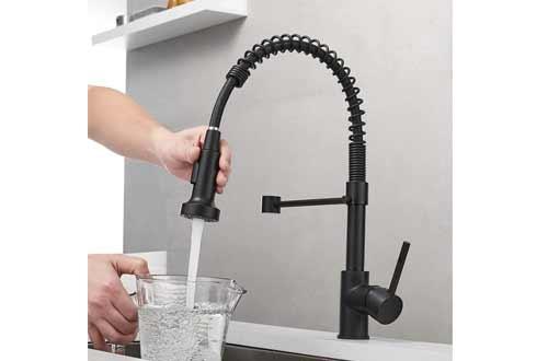 OWOFAN Kitchen Faucets